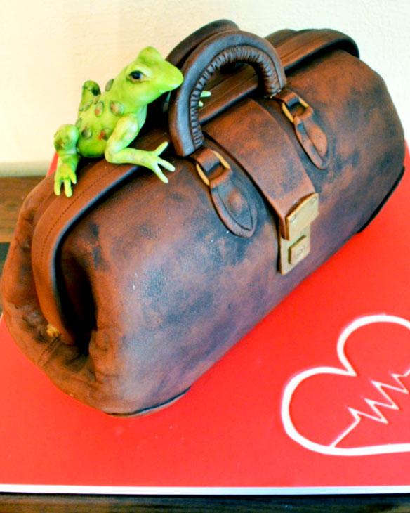 medical. frog, doctor, bag, cake, red, cake art, lake placid, ADK, celebration, the fancy cake box