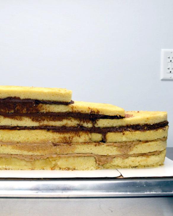 gt 500, cake, 3d cake, car, cake art, cake in progress, the fancy cake box, NY, Upstate
